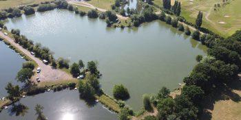 Swan Pond (M)